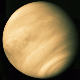 Venus is an extremely inhospitable world on the surface, but high up in its atmosphere, life may be able to survive. Credit: NASA / JPL